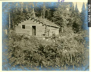 William francis ganong for Camp en bois rond