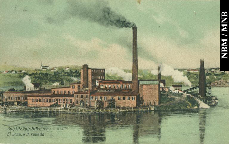 What are pulp mills?